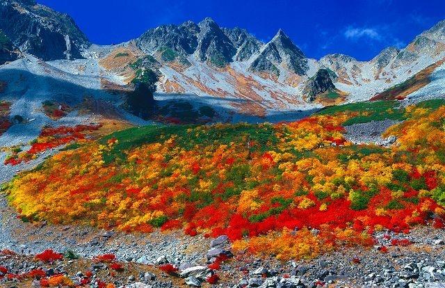 秋の紅葉シーズですよー(*^^*)